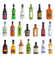 liqueur whiskey vodka and other bottles of vector image vector image