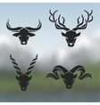 Logos horned animals vector image