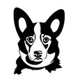 portrait of a welsh corgi vector image
