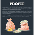 profit sacks full of money bag vector image
