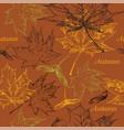 seamless pattern autumn 5 vector image