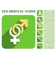 Sexual Symbols Icon and Medical Longshadow Icon vector image vector image
