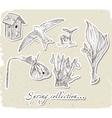 Vintage set of spring elements vector image vector image