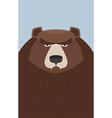 big brown bear vector image