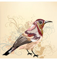 beautiful background with hand drawn bird vector image vector image