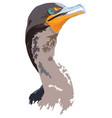 florida everglades cormorant vector image vector image