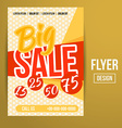 Sale flyer vector image