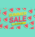 watermelon sale banner for summer 2021 vector image vector image