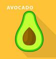 avocado icon flat style vector image