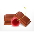cherry with chocolate pieces vector image