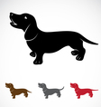 Dog Dachshund vector image vector image