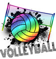 poster or banner with a volleyball ball vector image