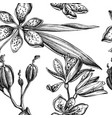 seamless pattern with black and white blackberry vector image