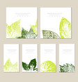 collection of template label visit cards vector image vector image