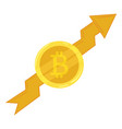 gold coin bitcoin course going up crypto vector image