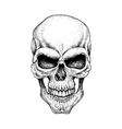 Graphic skull Dotwork vector image vector image