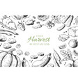 hand drawn vegetables background organic food vector image vector image