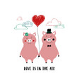 love card with couple of pigs vector image vector image