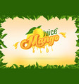 mango juice brand company logo design with vector image vector image