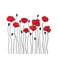 poppy flowers and buds floral pattern in black vector image