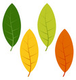 set of green yellow and red leaves vector image vector image
