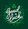 st patricks day lettering card vector image
