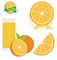 Orange set on white vector image