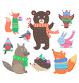 collection animal images vector image vector image