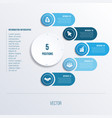 process chart template for presentation 5 option vector image vector image