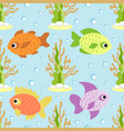 seamless background card with fish vector image vector image