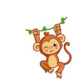 the monkey winks the animal is hanging on the vector image vector image