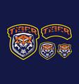 tiger mascot logo design vector image vector image
