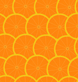 grapefruit seamless background wallpaper vector image