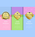 100 premium quality exclusive brand high award vector image vector image