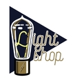 Color vintage lighting shop emblem vector image