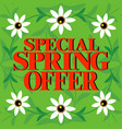 special spring offer beautiful colorful card vector image