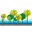 Trees and lamp posts alone the road vector image vector image