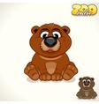 Cartoon Bear Character vector image