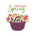 spring greeting card with basket of flowers vector image