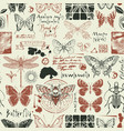 abstract seamless background with insects vector image vector image