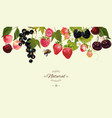 berry border vector image vector image