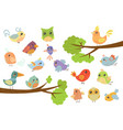 cute bird characters set cute colorful cartoon vector image