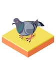Isometric Pigeon on the square ground2
