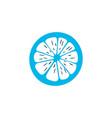 lemon icon colored symbol premium quality vector image