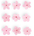 realistic sakura or cherry blossom japanese vector image vector image