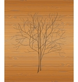 Wood texture with tree vector image vector image