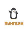 cartoon penguin flashcard for children vector image vector image