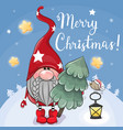 cute cartoon gnome with christmas tree on a blue vector image