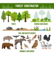 Forest Constructor Poster vector image