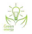 green energy eco certification vector image